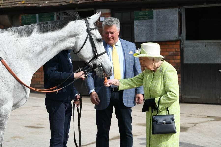 La reine rencontre le personnel et des entraîneurs de chevaux du Manor Farm Stables en 2019