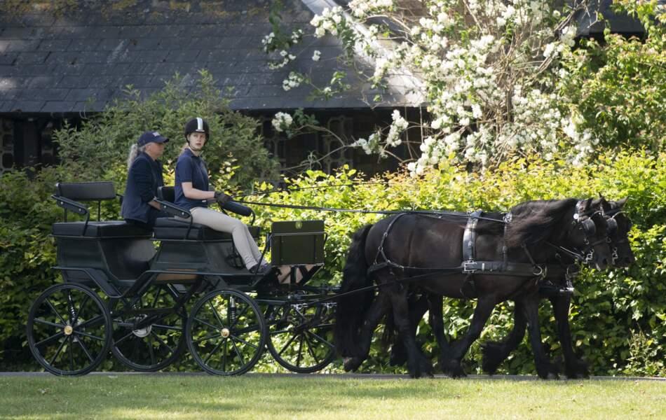 Lady Louise Windsor conduit la calèche imaginée par son grand-père, le prince Philip