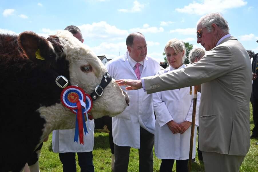 """Le prince de Galles avait déjà misé sur ces solaires en écaille de tortue pour rencontrer les éleveurs présents dans les stands du """"Great Yorkshire Show"""" à Harrogate, le 15 juillet 202"""