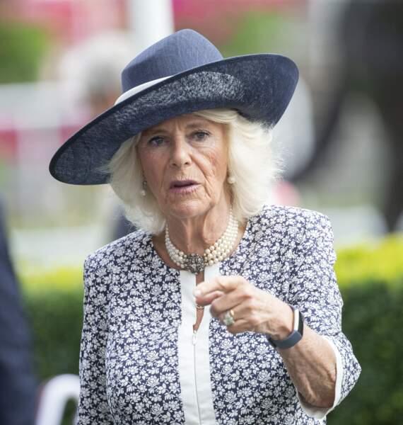 Jusqu'aux bijoux, Camilla Parker Bowles a accordé les couleurs de sa tenue à l'hippodrome d'Ascot.