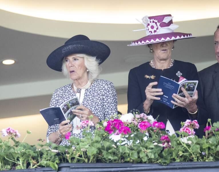 Camilla Parker Bowles suit avec passion la course en se renseignant sur la brochure, à l'hippodrome d'Ascot.